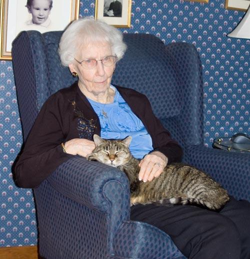 Cat_0001