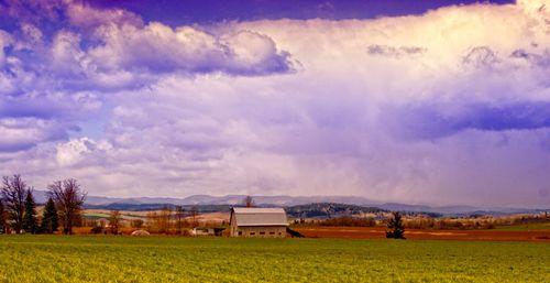 Barn_rollinghills