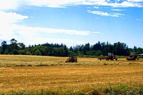 Field_tractors