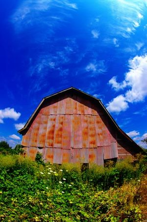 Stayton_barn_full