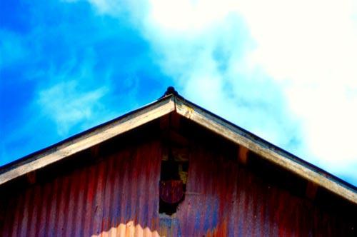 Stayton_barn